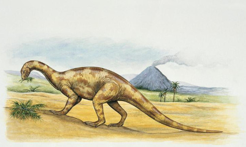 Artist???s rendering of a Thecodontosaurus.